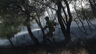Πυρκαγιές σε Μεσσηνία και Κύθνο