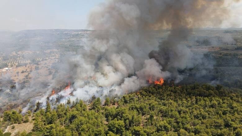 Πυρκαγιά σε δασική έκταση στα Κύθηρα