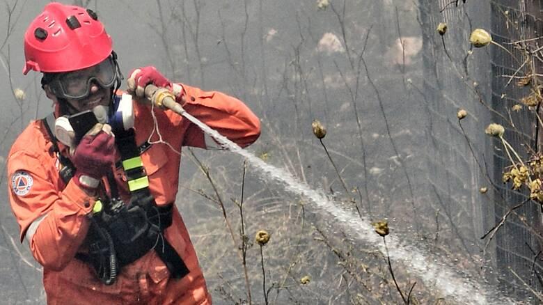 Φωτιά στη Μάνη: Εκκενώνεται προληπτικά οικισμός - Συναγερμός στην Πυροσβεστική