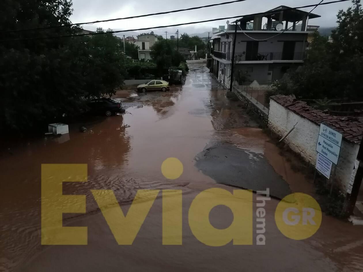 https://cdn.cnngreece.gr/media/news/2020/08/09/230115/photos/snapshot/evoia3.jpg