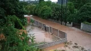 Η «Θάλεια» σάρωσε την Εύβοια: Πληροφορίες για δύο νεκρούς μετά τις πλημμύρες