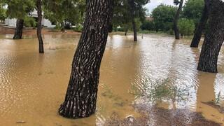 Πλημμύρες Εύβοια: 300 χιλιοστά βροχής σε 8 ώρες στη Στενή Ευβοίας