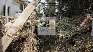 Εύβοια: Εργασίες αποκατάστασης της ηλεκτροδότησης από τον ΔΕΔΔΗΕ
