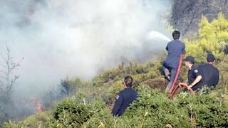 Φωτιά στην Κύπρο: Εκκενώνεται χωριό στην επαρχία Λεμεσού