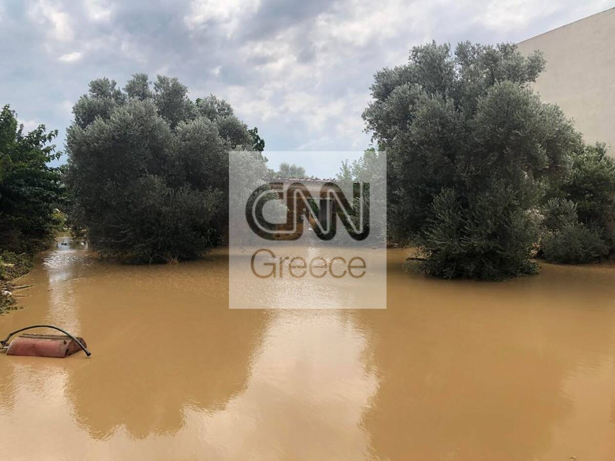 https://cdn.cnngreece.gr/media/news/2020/08/09/230174/photos/snapshot/117414236_805937813143760_4920574024961564057_n.jpg