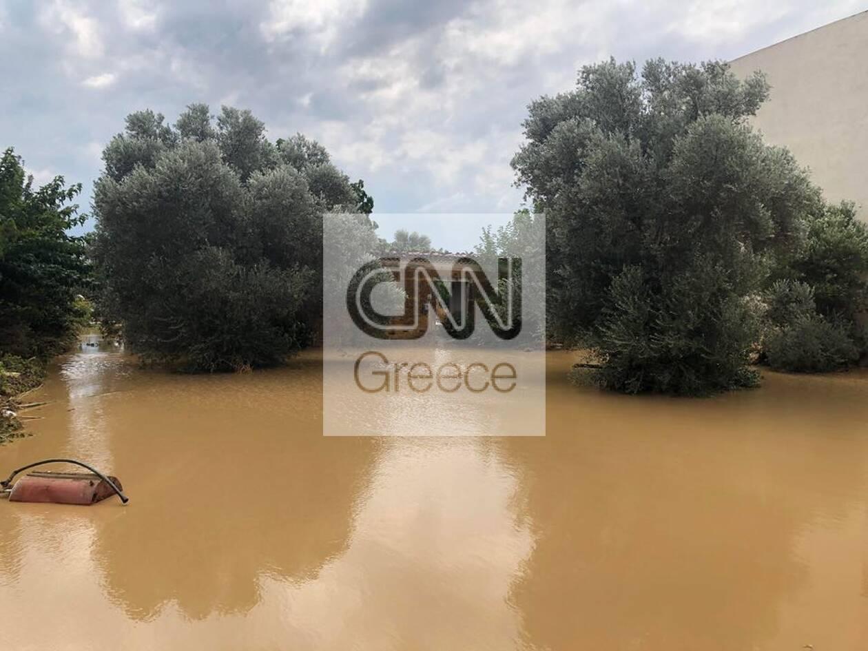 https://cdn.cnngreece.gr/media/news/2020/08/09/230185/photos/snapshot/117414236_805937813143760_4920574024961564057_n.jpg