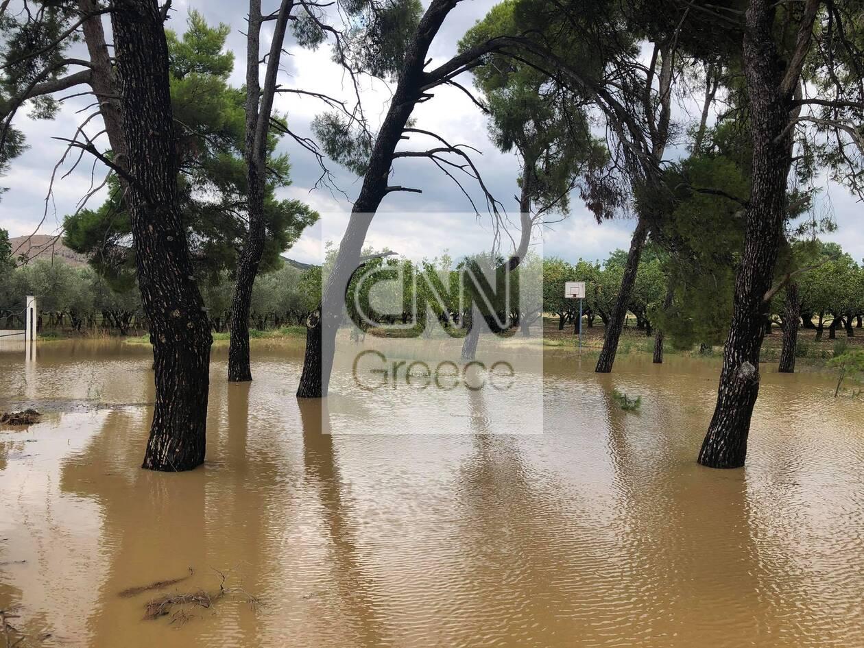https://cdn.cnngreece.gr/media/news/2020/08/09/230189/photos/snapshot/117636683_329663094830517_2649142983573692240_n.jpg