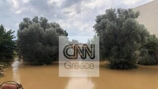 ΣΥΡΙΖΑ: Εμπαιγμός προς τους πληγέντες της Εύβοιας από την κυβέρνηση Μητσοτάκη