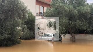 Πλημμύρες Εύβοια: «Θάφτηκαν» στην λάσπη ολόκληρες περιοχές – Συγκλονιστικά πλάνα