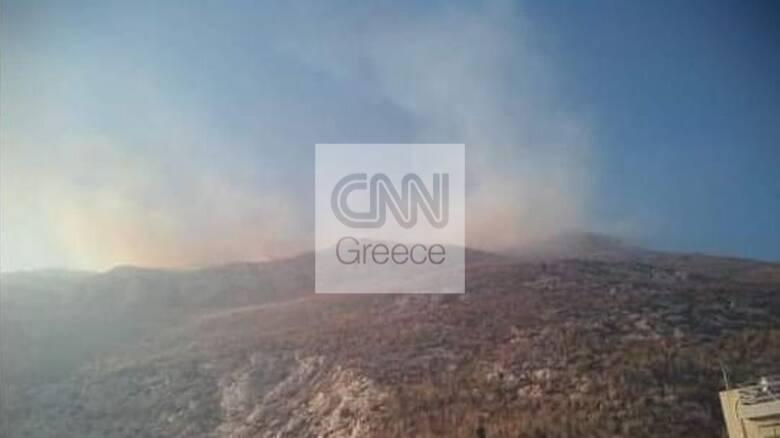 Φωτιά στη Νίκαια - Επιχειρούν και εναέρια μέσα