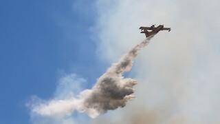 Φωτιά Χανιά: Ολονύχτια μάχη με τις φλόγες στην Κάνδανο - Εκκενώθηκαν οικισμοί