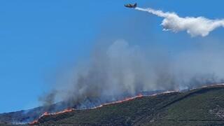 Μαίνεται η φωτιά στη Νάξο - Μεγάλη κινητοποίηση της Πυροσβεστικής