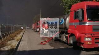 Φωτιά σε εργοστάσιο στη Μεταμόρφωση: Ενισχύονται συνεχώς οι δυνάμεις
