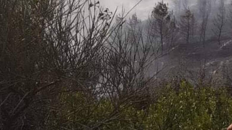 Καλύτερη η εικόνα από τη φωτιά στην Εύβοια - Δεν κινδυνεύουν σπίτια