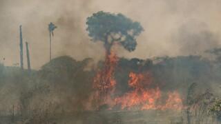 Βραζιλία - Νέες πυρκαγιές μαίνονται στον Αμαζόνιο: Κατακαίγονται δασικές εκτάσεις