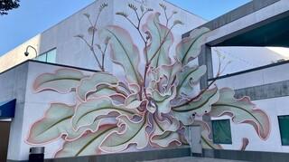 Καλιφόρνια: Ένα λουλούδι γκράφιτι «ανθίζει» στην επιφάνεια έξι τοίχων (pics)