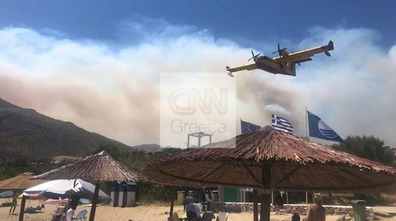Φωτιά στη Μάνη: Εντολή για προληπτική εκκένωση σε τρεις οικισμούς