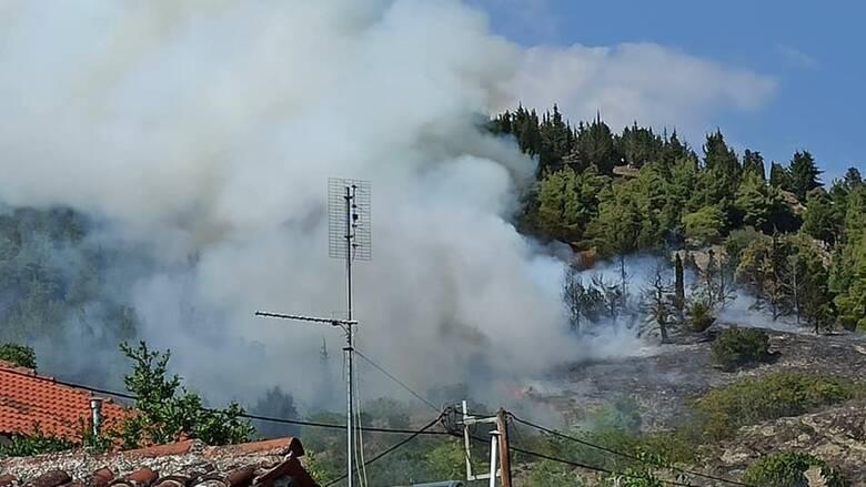 Φωτιά στην Ελασσόνα