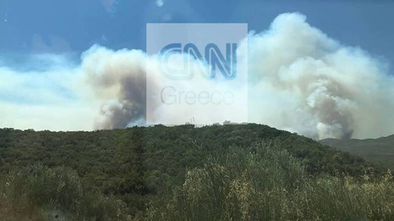 Φωτιά στη Μάνη: Ορατοί από το διάστημα οι καπνοί