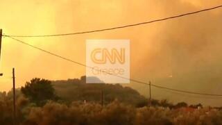 Φωτιά στη Μάνη: Μήνυμα του «112» έλαβαν οι κάτοικοι - Δύσκολη η νύχτα