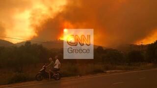 Φωτιά στη Μάνη: Βελτιωμένη η εικόνα του μετώπου - Δεν εμπνέει ανησυχία