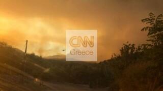 Φωτιά στη Μάνη: Διάσπαρτες εστίες και αναζωπυρώσεις - Ενισχύθηκαν οι δυνάμεις