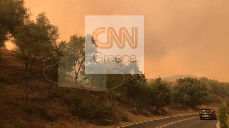 Φωτιά Μάνη: «Μάχη» με διάσπαρτες εστίες για δεύτερο βράδυ