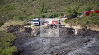 Συναγερμός στην Πυροσβεστική: Φωτιά στην Ροδόπολη Αττικής
