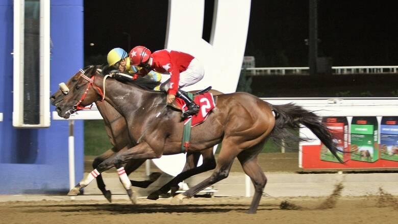 Μarkopoulo Park: Ταυτόχρονη άφιξη στην όγδοη ιπποδρομία