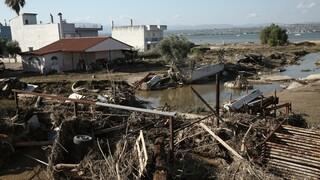 Πλημμύρες Εύβοιας: Αυτά είναι τα μέτρα για την ανακούφιση των πληγέντων