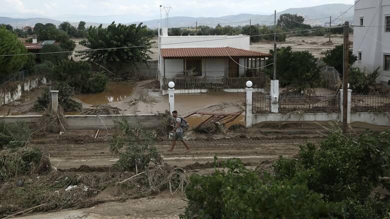 Πλημμύρες Εύβοια - Καραμανλής: Άνοιξε η πλατφόρμα για την ενίσχυση των πληγέντων
