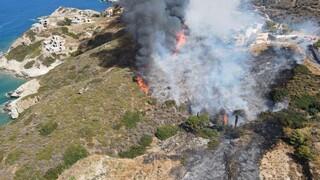 Φωτιά Αγία Πελαγία: Στο αυτόφωρο οι συλληφθέντες - Κάηκαν 30 στρέμματα