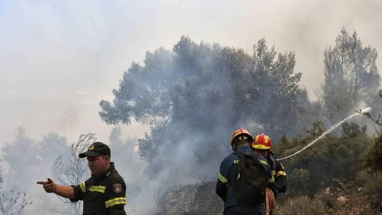 Βόνιτσα: Φωτιά στον Προφήτη Ηλία