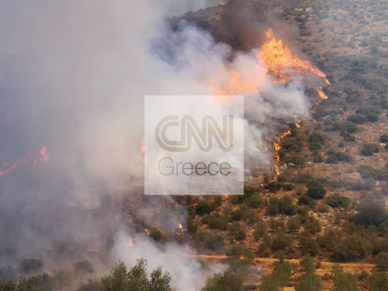 https://cdn.cnngreece.gr/media/news/2020/08/30/232503/photos/snapshot/118683342_758613534715350_2107277207897848184_n.jpg