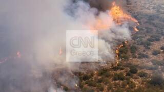 Φωτιά στις Μυκήνες - Απομακρύνθηκαν οι επισκέπτες από τον αρχαιολογικό χώρο