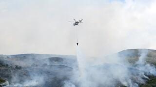 Σε εξέλιξη δύο πυρκαγιές στον Έβρο