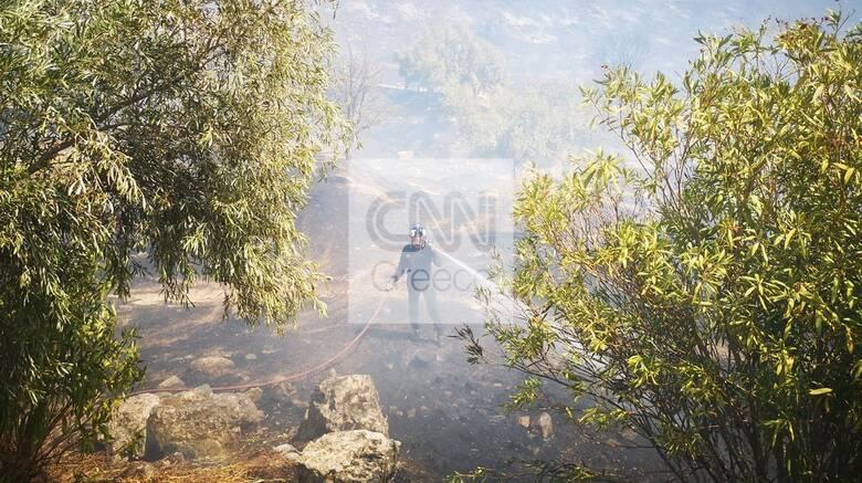 Μαίνεται η φωτιά στις Μυκήνες - Ενισχύθηκαν οι πυροσβεστικές δυνάμεις