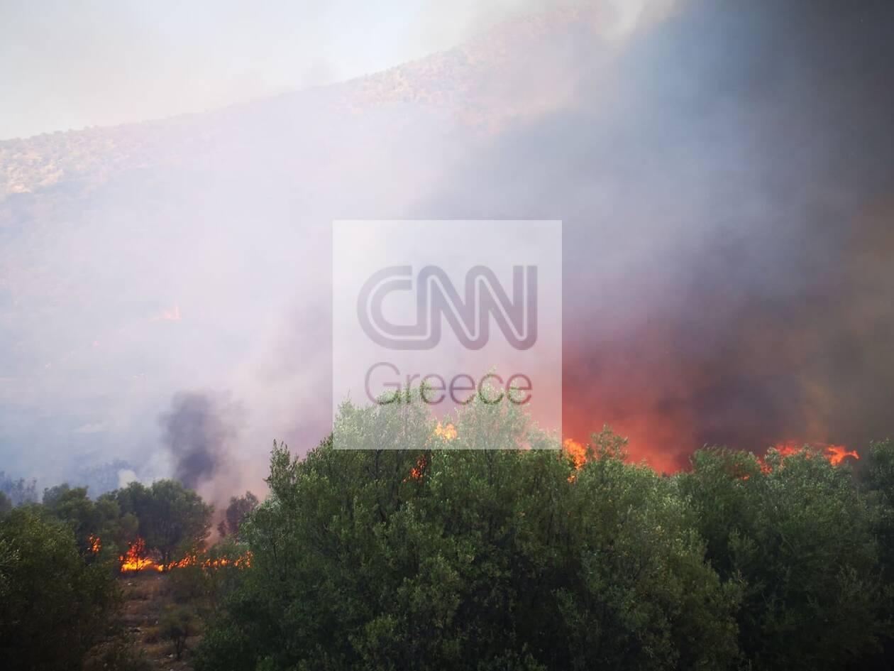 https://cdn.cnngreece.gr/media/news/2020/08/30/232529/photos/snapshot/fotia-3.jpg