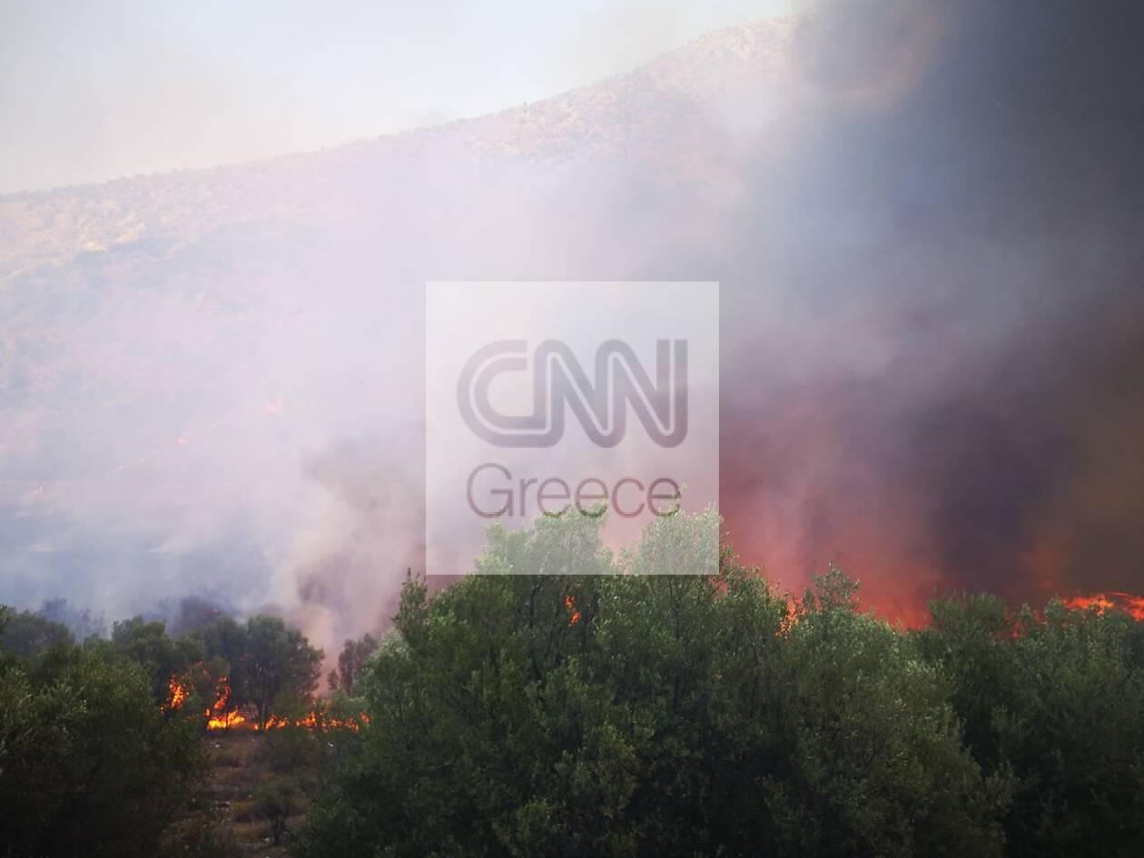 https://cdn.cnngreece.gr/media/news/2020/08/30/232529/photos/snapshot/fotia-4.jpg