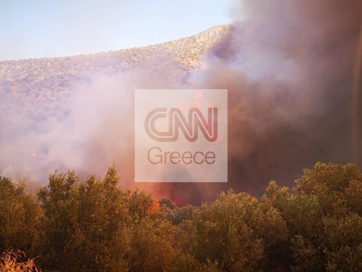 https://cdn.cnngreece.gr/media/news/2020/08/30/232529/photos/snapshot/fotia-5.jpg