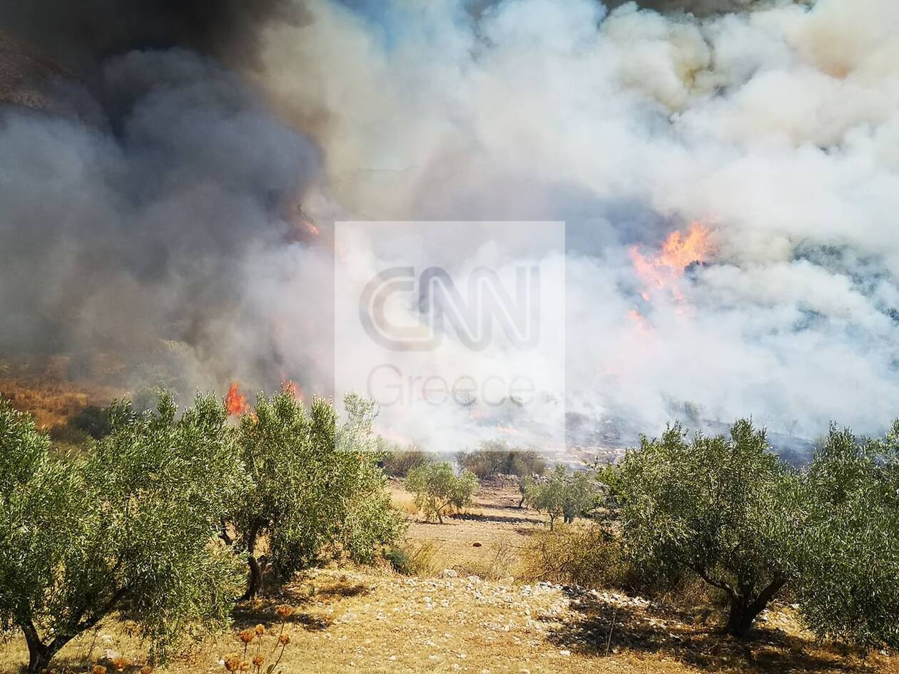 https://cdn.cnngreece.gr/media/news/2020/08/30/232529/photos/snapshot/fotia-6.jpg