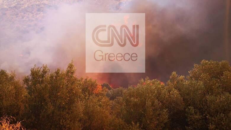 Φωτιά Μυκήνες – Ραγκούσης: Εγείρονται ερωτήματα ως προς το μέγεθος της καταστροφής