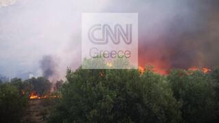 Υπό μερικό έλεγχο η φωτιά στις Μυκήνες