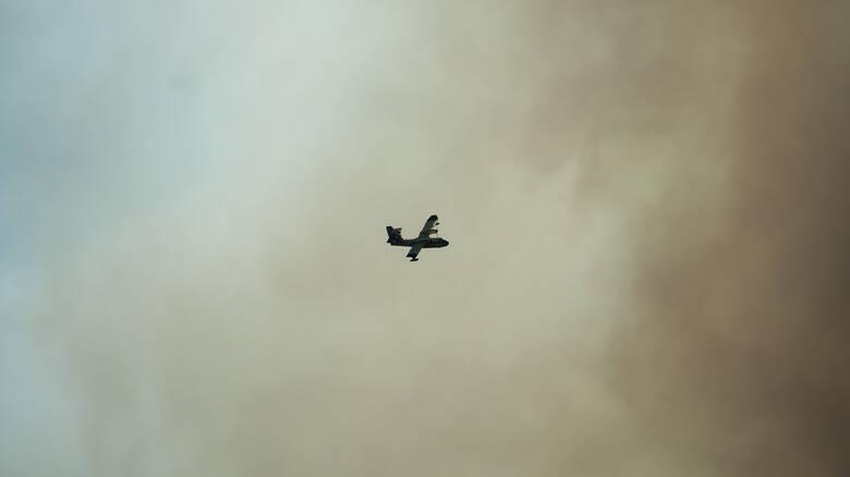 Φωτιά στη Ζάκυνθο: Μεγάλη κινητοποίηση της Πυροσβεστικής