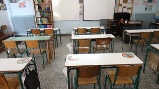 Μαγιορκίνης για άνοιγμα σχολείων: Θα έκλινα προς 14 Σεπτεμβρίου