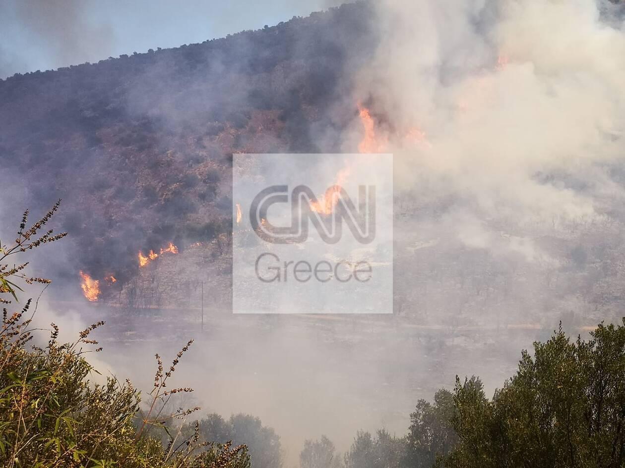 https://cdn.cnngreece.gr/media/news/2020/08/31/232675/photos/snapshot/118654383_974019869689666_4206769154736625818_n.jpg