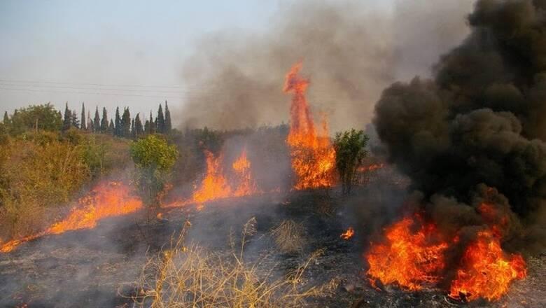 Φωτιά στη Νεμέα Κορινθίας: Επιχειρούν ισχυρές δυνάμεις