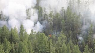 Ρωσία: Οι πυρκαγιές στη Σιβηρία προκάλεσαν την έκλυση ποσοστού ρεκόρ διοξειδίου του άνθρακα