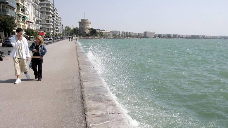 Θεσσαλονίκη: «Πήδημα θανάτου» για δεκάδες σαρδέλες στην παραλία