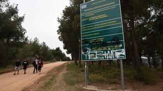 Θεσσαλονίκη: Πού υπάρχει απαγόρευση κυκλοφορίας λόγω υψηλού κινδύνου πυρκαγιάς